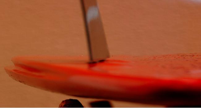 COVER bordo per tavole da surf